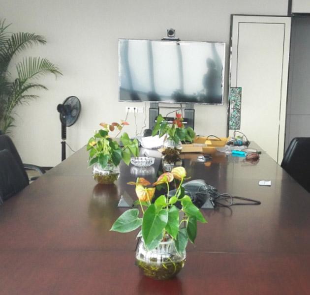 深圳某集团公司视频会议系统项目