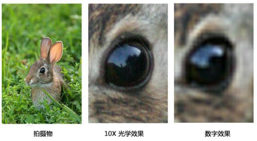 视频会议摄像机中的光学变焦和数字变焦有什么